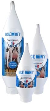 Ice Mint Gel